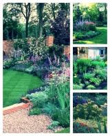 DIY Gardener: The Best Perennials For Starting yourGarden